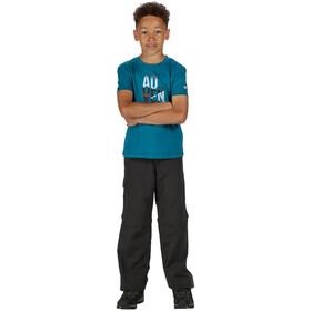 Regatta Sorcer II Zip-Off Trousers Kids, ash